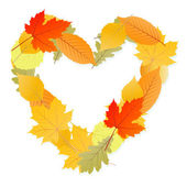 Leaf heart vector autumn background — Stock Vector