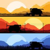 Combine harvesting crop in grain fields vector — Stock Vector