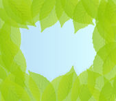 Green leaves background vector — Vector de stock