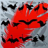 żuraw ptak i piór sylwetka szczegółowe — Wektor stockowy