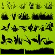 Grass and plants detailed silhouettes illustration collection ba — Stock Vector