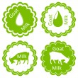 Organic farm dairy goats cheese, milk and meat food labels illus — Stock Vector #22627051