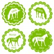 Organic farm horse meat food labels illustration — Stock Vector #22627111