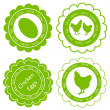 Royalty-Free Stock Vector Image: Chicken eggs vector background label stamp green farm ecology