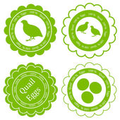 Quail eggs vector background label stamp green farm concept — Stock Vector