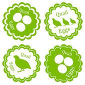 Quail eggs vector background label stamp green farm concept — Stock Vector