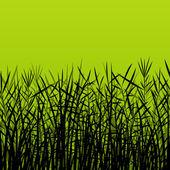 Grama, reed e ba de ilustração de silhuetas detalhada de plantas selvagens — Vetorial Stock