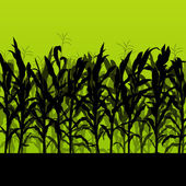 Corn field detailed countryside landscape illustration backgroun — Stock Vector