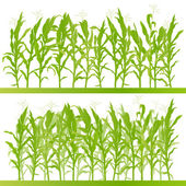 Corn field detailed countryside landscape illustration backgroun — Stock Vector