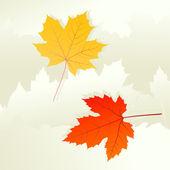 秋の葉の背景ベクトルの概念 — ストックベクタ