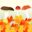 Mushrooms and leaves vector autumn background — Stock Vector #33623007