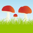 Mushrooms vector background — Stock Vector #33623033