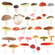 Mushrooms collection set vector background — Stock Vector