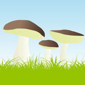 Mushrooms vector background — Stock Vector