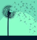 Blow dandelion vector vintage background concept — Stock Vector