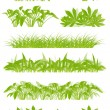 Tropical exotic jungle grass and plants detailed silhouettes lan — Stock Vector #37236573