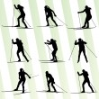 Active young womskiing set sport silhouette vector background — Stock Vector #41120437