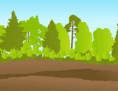 Forest in summer vector background landscape — Stock Vector