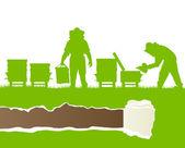 Biodlare som arbetar i bigården vektor bakgrund ekologi — Stockvektor