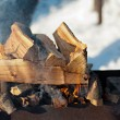 Inflames the logs in the grill outdoors — Stock Photo