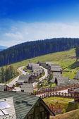 Casas com telhados verdes na montanha — Fotografia Stock