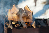 Inflames logs in the grill outdoors — Stock Photo