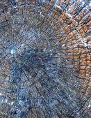 色グランジ抽象的な背景テクスチャ — ストック写真