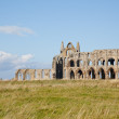 whitby abbey — Stock Photo