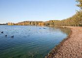 湖畔 — ストック写真