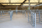 Cattle Shed — Stock Photo