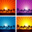 Tropical summer sunset palm tree silhouettes — Stock Vector