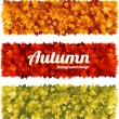 Colorful autumn fall banners with maple leaves — Stok Vektör