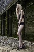 Lingerie bikini young sexy photo model posing on a beach — Stockfoto
