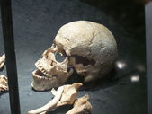 Prehistory — Stock Photo