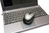 Mouse and laptop — Stock Photo