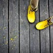Yellow boots — Stock Photo #27532933