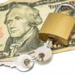 Secured money — Stock Photo #31326741