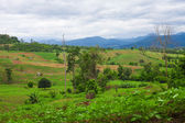 Mountain valley of northern Thailand in cloudy weather — Stock Photo