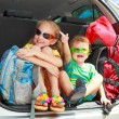 Two happy kids in the car — Stock Photo #14178720