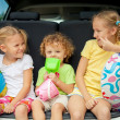 Three happy kids in the car — Stock Photo #30478049