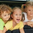 Three happy kids in the car — Stock Photo #30478633
