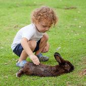 Kleine jongen met konijn — Stockfoto