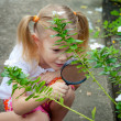 One little girl with magnifying glass outdoors in the day time — Foto Stock