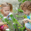 Stock Photo: Two little kids with magnifying glass outdoors in the day time