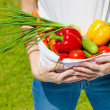 Womholding fresh vegetables in lap — Stockfoto #34126395