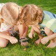 Stock Photo: Two little kids playing with magnifying glass outdoors in the d