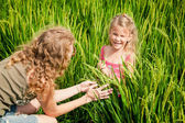 Mother and daughter on the rice paddies — Stock Photo