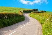Village road in between grass field — Stock Photo