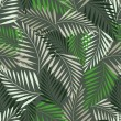 Fern leaf seamless pattern - Stock Vector