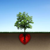 Tree and root of red heart — Stock Photo